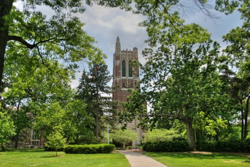 Michigan-State-University-PhD-in-School-Psychology