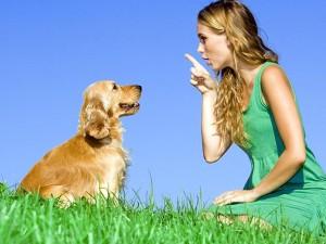 animal-behaviorist