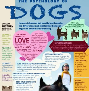 psychology of dogs